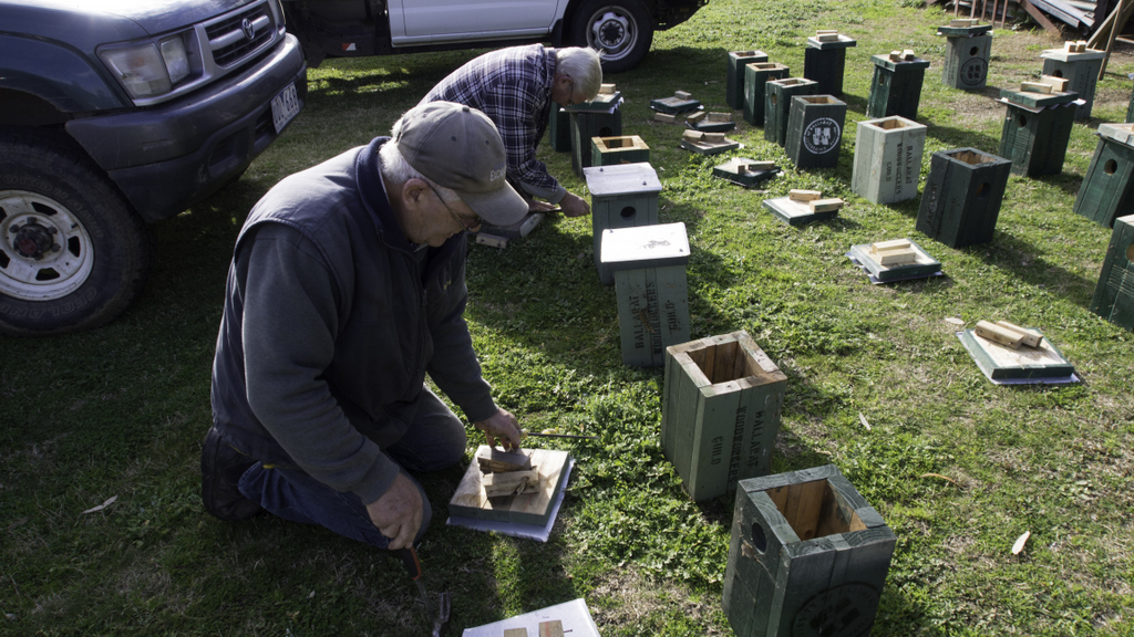 Constructing Nesting Boxes