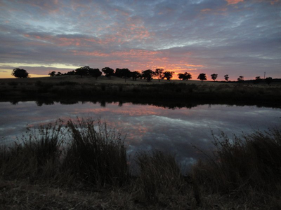 Sunset over wetland