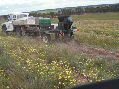 Direct seeding is a cost and time efficient method of revegetation