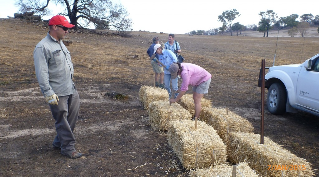 Brad with straw bales for sediment traps SMALL
